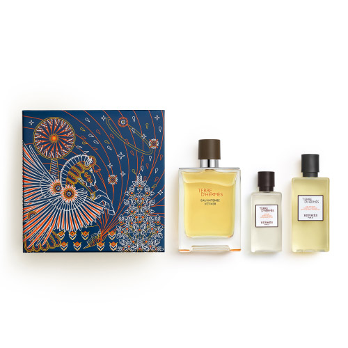 Terre d'Hermès HERMÈS Terre d'Hermès Vétiver X'Mas Set - EDP 100ml + Shower Gel 80ml + After Shave Lotion 40ml 100 ml